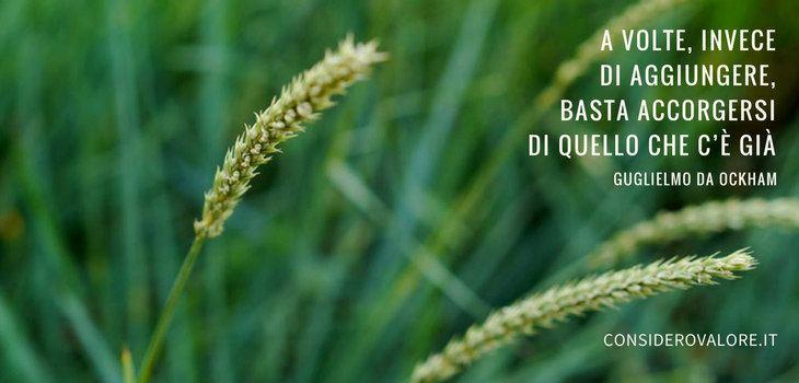 Spighe di grano con citazione di Guglielmo da Ockham: A volte, invece di aggiungere, basta accorgersi di quello che c'è già