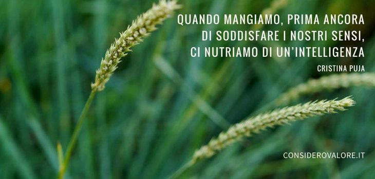 Spighe di grano con citazione di Cristina Puja: Quando mangiamo, prima ancora di soddisfare i nostri sensi, ci nutriamo di un'intelligenza