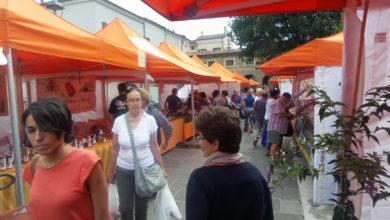 Il mercato contadino di Mantova, sul Lungorio
