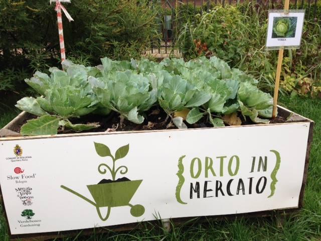 Orto-ambulante_Mercato-Terra-Bologna