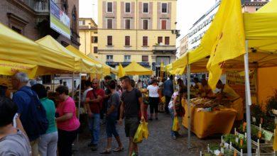 Bologna: tutti i mercati contadini in città