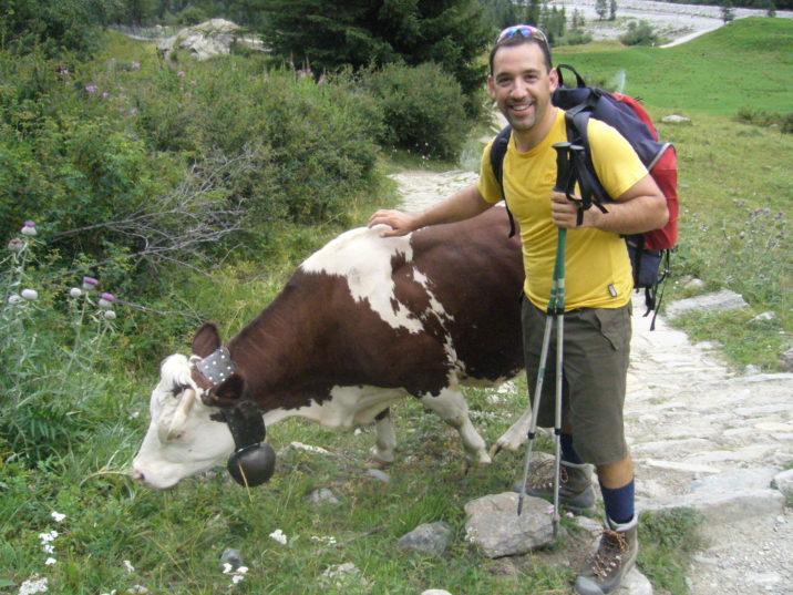 Daniele Sogni, guida ambientale escursionistica, propone di abbinare la sua specialità (guidare i gruppi per giri appenninici) con le specialità produttive locali. Qui: incontro ravvicinato con vacca al pascolo.
