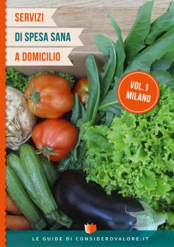 Cover_Spesa-sana-a-domicilio