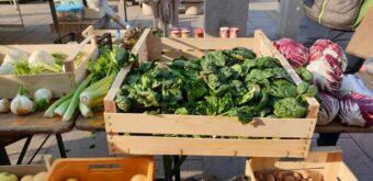 Banco azienda agricola Maso Paradiso Slow Food Nord Milano