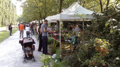 Tutti i mercati contadini vicino a Milano, in provincia e hinterland