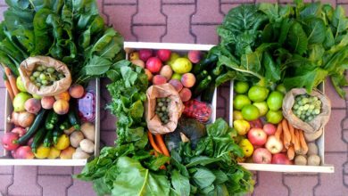 Le cassette di frutta e verdura biologica e sociale di Fruttiamo la terra