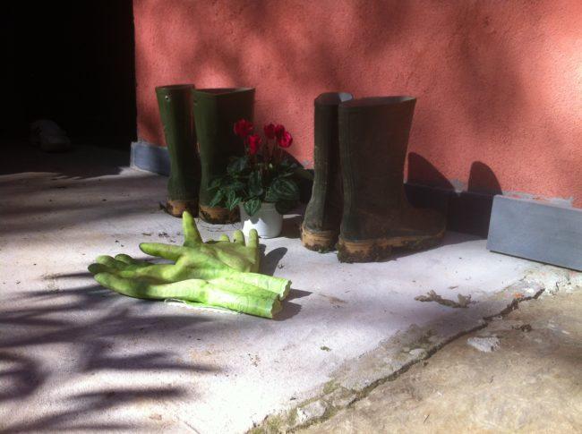 Hui Neng: stivali e guanti per il lavoro nell'orto