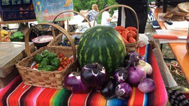 Dove trovare frutta e verdura e altri prodotti a km 0 a Piacenza