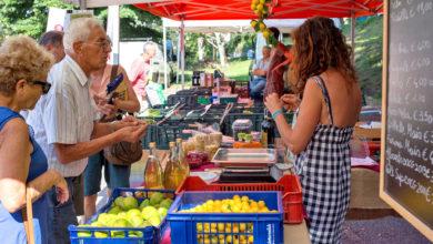 Dove trovare frutta e verdura biologica a km zero a Como e dintorni