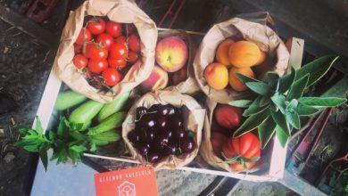 Frutta e verdura di stagione di giugno