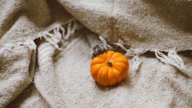 Il cibo giusto per l'autunno: come adattarsi al cambio di stagione
