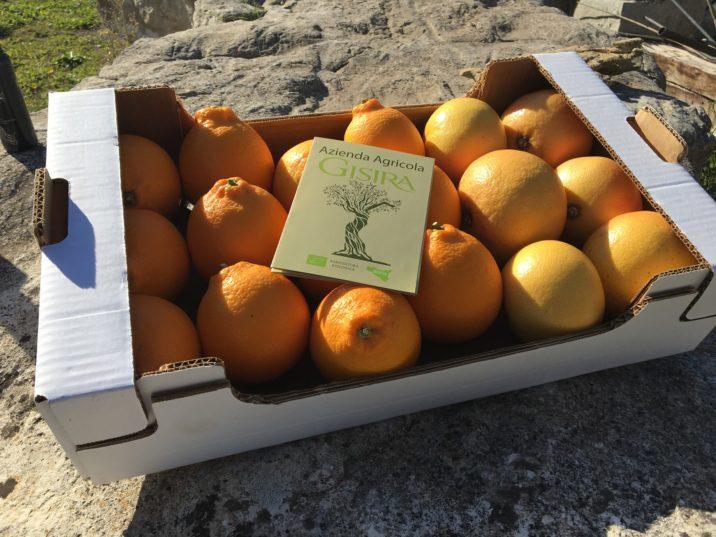 cassetta di arance