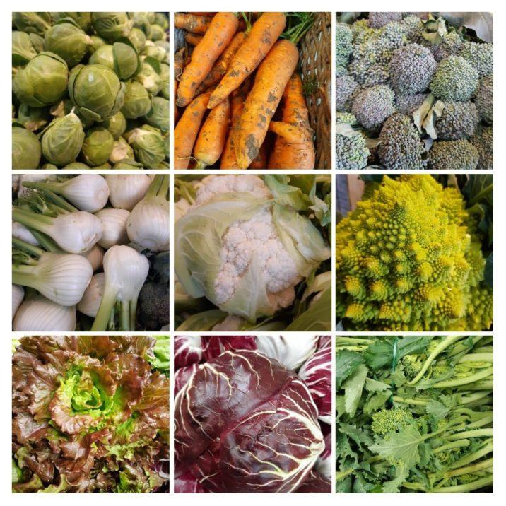 verdura-di-stagione-di-gennaio