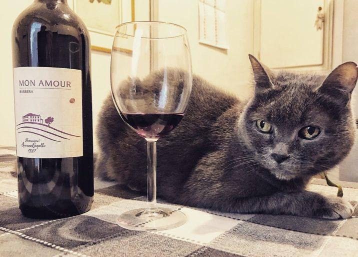 Bottiglia Mon Amour Sparano Capelli con gatto