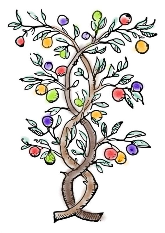 Logo di Il Frutteto di Marta e Maria