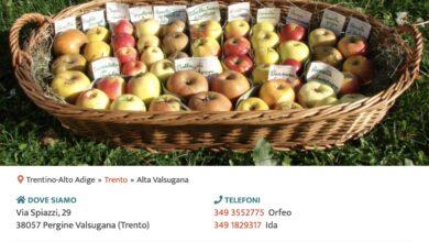 Screenshot Profilo PRO