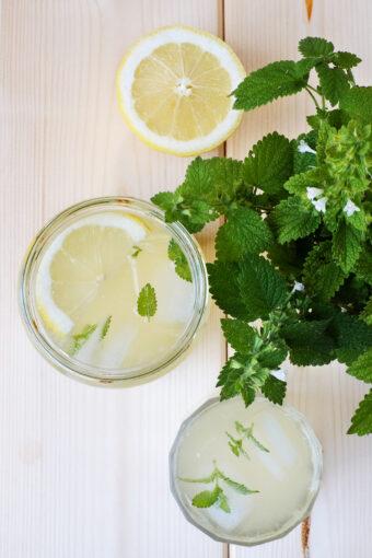 limonata-alla-melissa