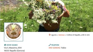 Pagina Fescion Farmer