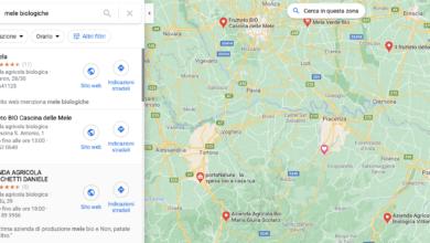 Risultati locali su Google Maps