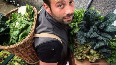 Fescion Farmer Rapallo