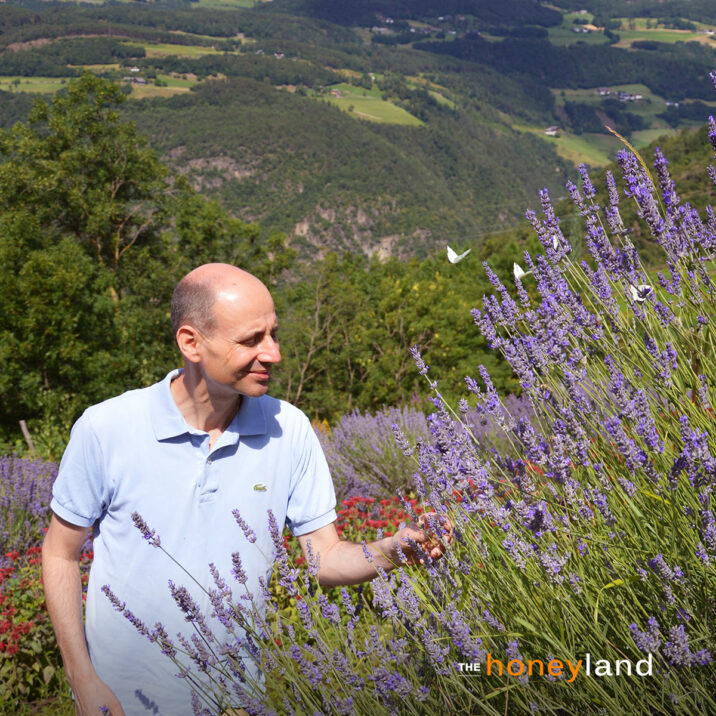 The Honeyland: Manuele di fronte alla lavanda all'Alpe di Siusi.